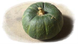 ハロウィンのかぼちゃの品種は