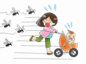 秋の蚊は痒い 予防