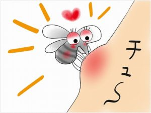 蚊 かゆい理由 腫れる