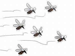蚊 かゆい 理由